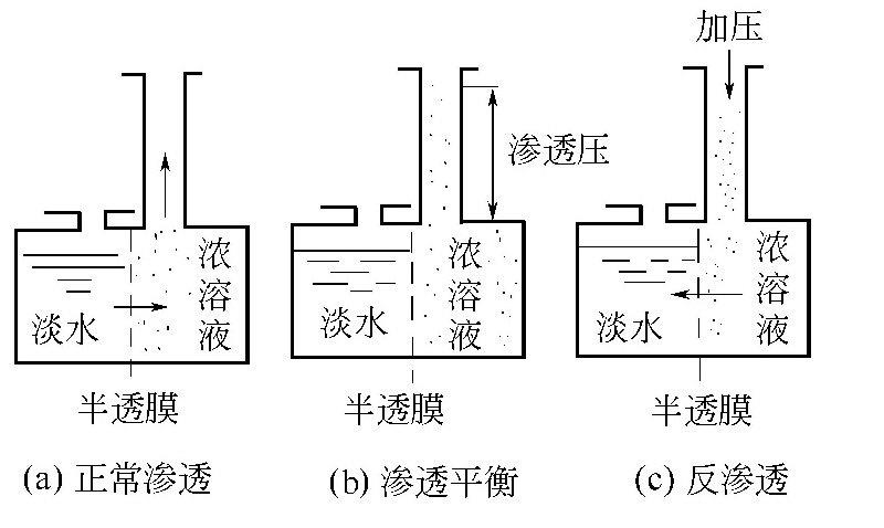 反渗透除盐原理是什么?反渗透膜如何分类?