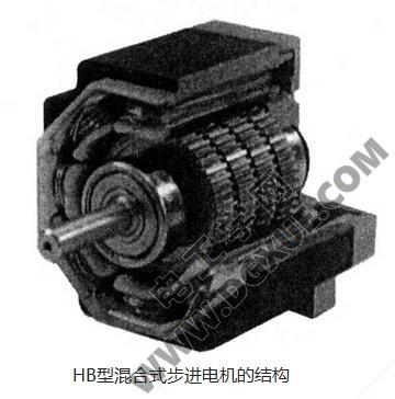 HB型混合式步进电机的结构剖面