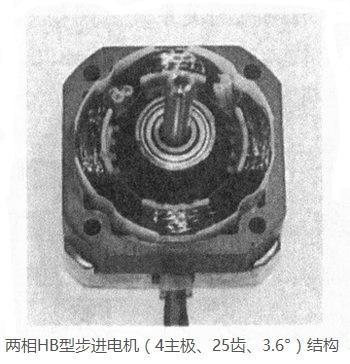 两相HB型混合式步进电机(定子4极、转子25齿、3.6°步距角)结构图